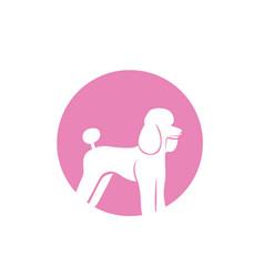 Dog animals logo pets shop template icons app vector