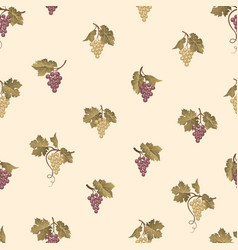 grape seamless pattern wine yard natural fruit vector image