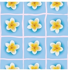seamless pattern with Plumeria or vector image