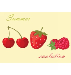 Cherry strawberry and raspberry background vector