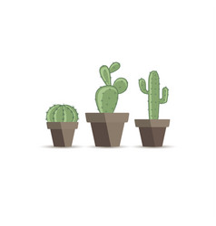 cactus in a flower pot vector image