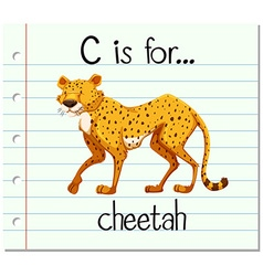 Flashcard letter c is for cheetah vector