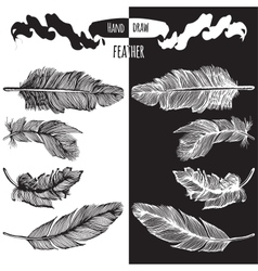 Hands drawn bird feather vector image vector image