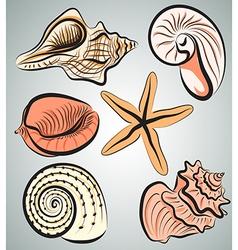 Shells3 vector image
