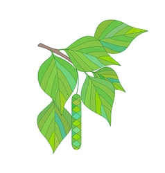 Branch of a birch tree with earring vector