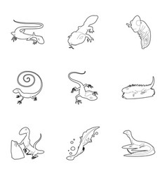 lizard icons set outline style vector image vector image