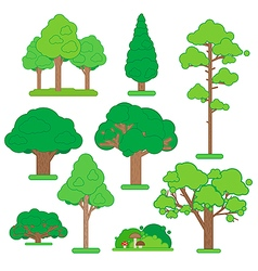 Set of green trees and shrubs on white background vector