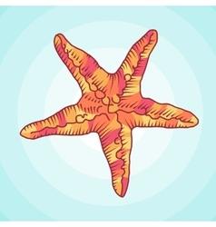Zentangle starfish sketch ocean abstract vector