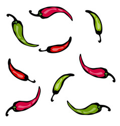 red and green hot chilli pepper sketch vector image