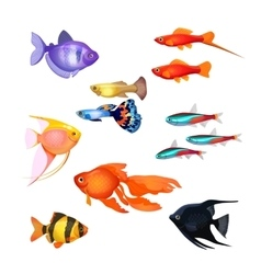 Set of aquarium fish realistic and fairytale vector