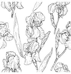Doodle iris seamless vector