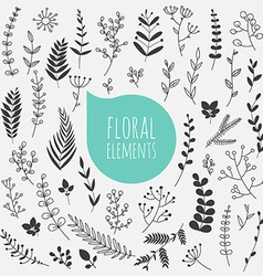 Floral elements collection of spring flowers vector