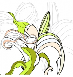 Lily calla flowers vector