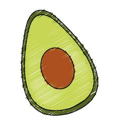 Avocado half fresh isolated icon vector