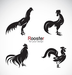 group of rooster design vector image