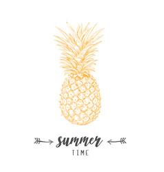 pineapple yellow skech letitering summer vector image