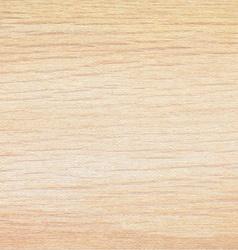 Light beige wood texture background Natural vector image vector image