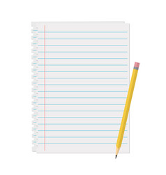 line a sheet of paper with margins vector image