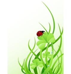 Green grass and ladybird vector