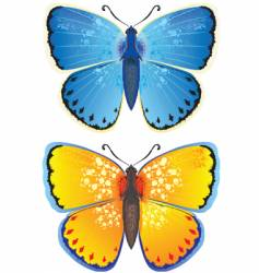 Yellow and blue butterfly vector