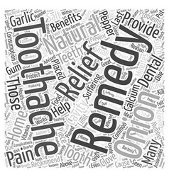 Natural remedies for toothaches word cloud concept vector