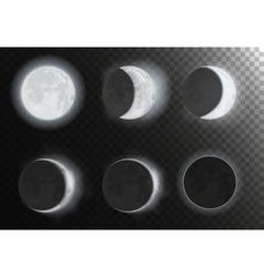 Night full new moon planet phases on the night vector image
