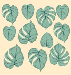 simple seamless pattern of leaves monstera green vector image