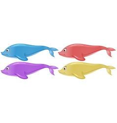 Four colorful dolphins vector image