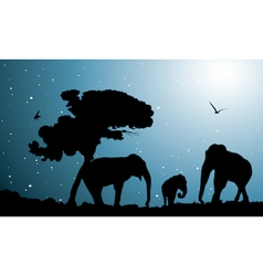 family of elephants vector image