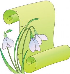 snowdrops scroll vector image vector image
