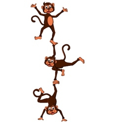 Monkeys cartoon attraction vector
