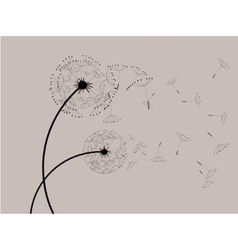 Dandelions in the wind vector image