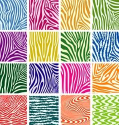 skin textures of zebra vector image vector image