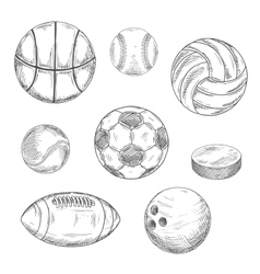 Sporting balls and hockey puck sketch icons vector