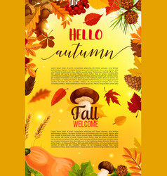 Hello autumn banner design with fall nature frame vector