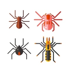 Spiders isolated icons set vector