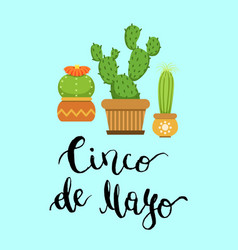 cacti in pots in flat style and cinco de mayo vector image vector image