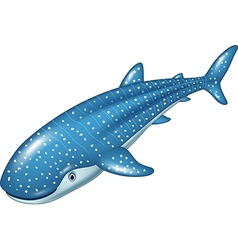 Cartoon whale shark isolated on white background vector image vector image