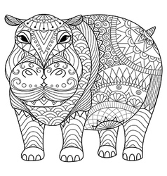 hippo coloring book vector image vector image