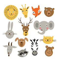 Animal faces vector