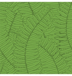Seamless background with fern leaves vector