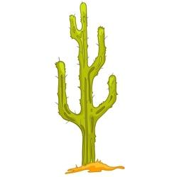 cartoon nature plant cactus vector image
