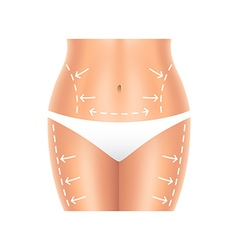 Plastic surgery belly and legs isolated vector