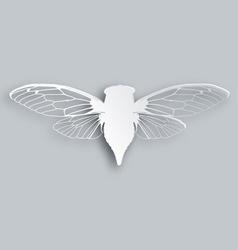 White cicada vector