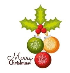 merry christmas balls holly berry design vector image