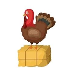 Turkey of thanksgiving design vector