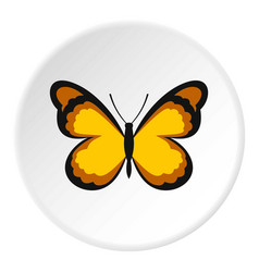 Insect butterfly with pattern on wings icon circle vector
