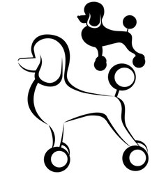 Poodle dog vector image vector image