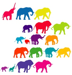 Set of elephant colored silhouettes vector image vector image