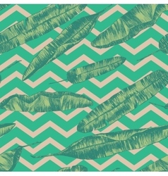 Seamless pattern with banana palm leaves hand vector